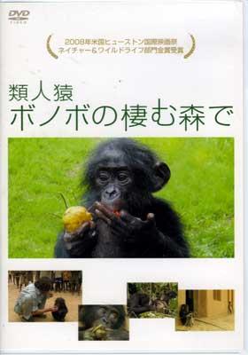 類人猿ボノボの棲む森で(DVD)(PCBG-10999)