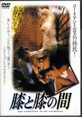 膝と膝の間(DVD)(GNBF-7272)