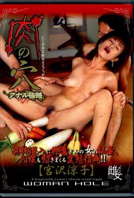 肉の穴 [宮沢涼子](DVD)(DMS-004)